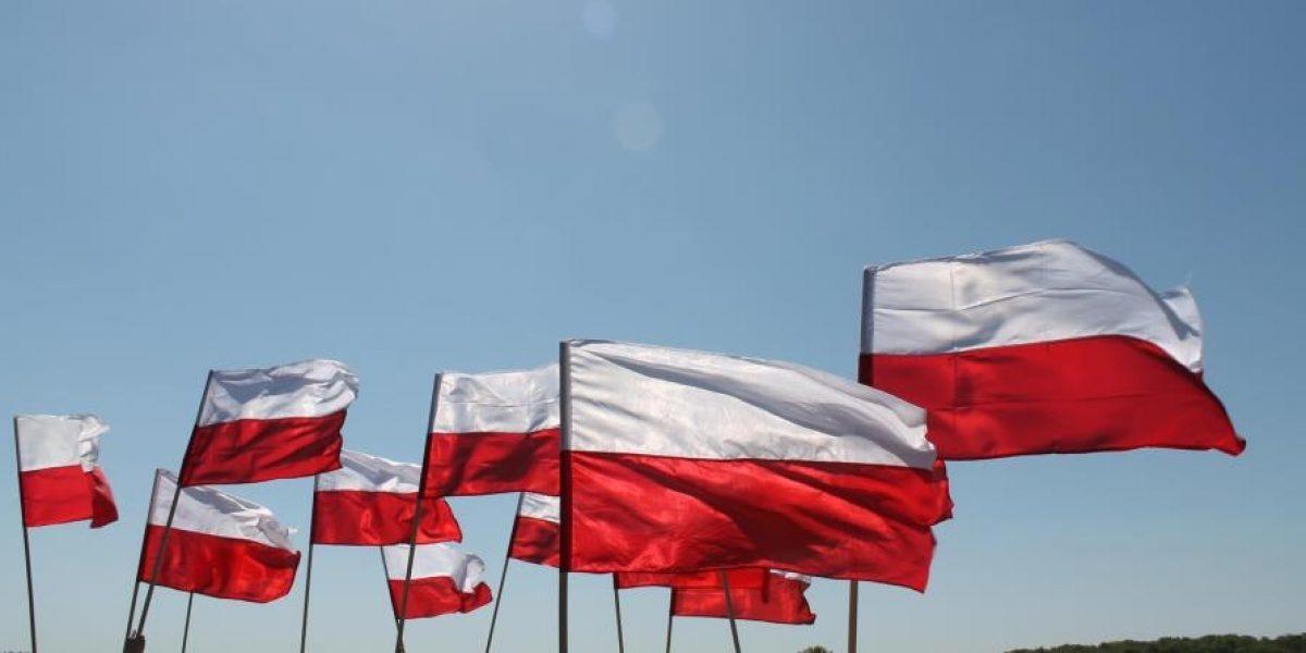 2017-flagi